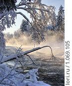 Купить «Зимний пейзаж с деревьями и речкой», эксклюзивное фото № 1069105, снято 31 января 2009 г. (c) Сергей Цепек / Фотобанк Лори
