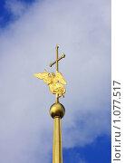Ангел-хранитель. Шпиль собора Петропавловской крепости (2009 год). Стоковое фото, фотограф Владимир Трифонов / Фотобанк Лори