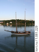 Купить «Остров у берегов Финляндии», фото № 1081229, снято 2 августа 2009 г. (c) Александр Секретарев / Фотобанк Лори