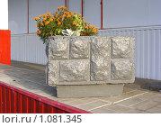 Купить «Декоративный вазон с цветами около магазина», эксклюзивное фото № 1081345, снято 4 сентября 2009 г. (c) lana1501 / Фотобанк Лори