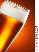 Купить «Бокал с пивом», фото № 1085201, снято 2 сентября 2009 г. (c) Роман Сигаев / Фотобанк Лори