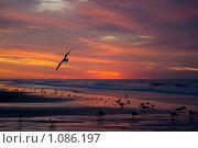 Рассвет. Стоковое фото, фотограф Муравьев Андрей / Фотобанк Лори