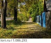 Купить «Школьная пора», фото № 1086293, снято 2 октября 2008 г. (c) Арапова Ольга / Фотобанк Лори