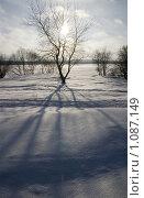 Солнце. Стоковое фото, фотограф Мастепанов Иван / Фотобанк Лори