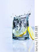 Купить «Лимонная свежесть», фото № 1091081, снято 9 августа 2009 г. (c) Данил Ефимов / Фотобанк Лори