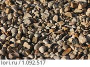 Купить «Каменистый пляж. галька», фото № 1092517, снято 12 сентября 2009 г. (c) Устинов Дмитрий Николаевич / Фотобанк Лори