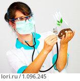 Купить «Ученый проверяет состояние побега», фото № 1096245, снято 5 августа 2009 г. (c) Андрей Армягов / Фотобанк Лори