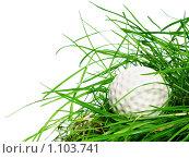 Купить «Мяч для гольфа», фото № 1103741, снято 19 сентября 2009 г. (c) Данил Ефимов / Фотобанк Лори