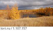 Купить «Тайга и осень...», фото № 1107157, снято 19 сентября 2009 г. (c) Юрий Бульший / Фотобанк Лори