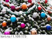 Шарики на елке. Стоковое фото, фотограф Оксана Шагова / Фотобанк Лори