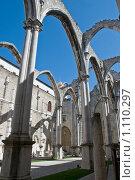 Готические руины (Церковь Карму) (2009 год). Стоковое фото, фотограф Игорь Демидов / Фотобанк Лори
