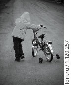 Купить «На прогулке», фото № 1120257, снято 31 марта 2008 г. (c) Усова Светлана  Юрьевна / Фотобанк Лори
