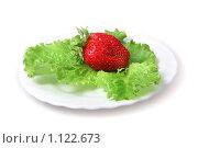 Купить «Клубника и зеленый салат», фото № 1122673, снято 7 августа 2009 г. (c) ElenArt / Фотобанк Лори