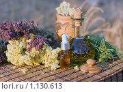 Купить «Лекарственные травы и  масла», фото № 1130613, снято 10 сентября 2009 г. (c) Татьяна Белова / Фотобанк Лори
