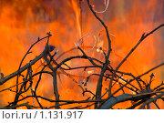 Либертанго. Стоковое фото, фотограф Сергей Жуков / Фотобанк Лори