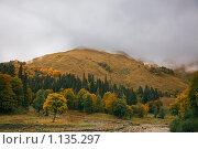 Купить «Горный пейзаж», фото № 1135297, снято 23 февраля 2019 г. (c) Виктор Застольский / Фотобанк Лори