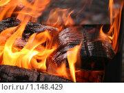 Купить «Огонь», фото № 1148429, снято 9 октября 2009 г. (c) Gagara / Фотобанк Лори