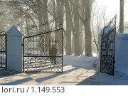 Зимнее одиночество (2009 год). Редакционное фото, фотограф Виктор Пашин / Фотобанк Лори