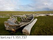 На северных просторах. Стоковое фото, фотограф Александр Гаврилов / Фотобанк Лори