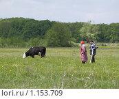 Купить «Мужчина и женщина пасут корову», фото № 1153709, снято 15 мая 2008 г. (c) Александр Легкий / Фотобанк Лори
