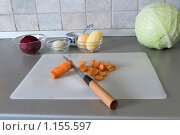 Купить «Нарезанные овощи», фото № 1155597, снято 17 сентября 2008 г. (c) Лилия Барладян / Фотобанк Лори