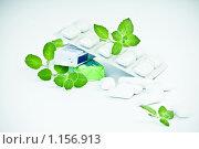 Купить «Жевательная резинка и листья мяты», фото № 1156913, снято 24 сентября 2009 г. (c) Валерия Потапова / Фотобанк Лори