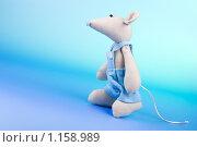 Крыс. Стоковое фото, фотограф Тимур Аникин / Фотобанк Лори