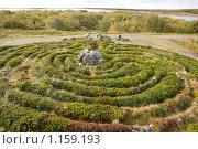 Купить «Соловецкие острова. Большой Заяцкий остров. Лабиринт.», фото № 1159193, снято 13 сентября 2009 г. (c) Михаил Ворожцов / Фотобанк Лори