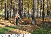 Купить «Осенняя уборка листьев в парке», фото № 1160421, снято 18 октября 2009 г. (c) Сергей Шумаков / Фотобанк Лори
