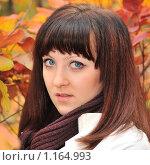 Купить «Осенний портрет», фото № 1164993, снято 11 октября 2009 г. (c) Сергей Галушко / Фотобанк Лори