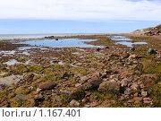 Купить «Каменистый берег в отлив», эксклюзивное фото № 1167401, снято 11 февраля 2005 г. (c) Наталия Шевченко / Фотобанк Лори