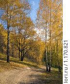 Осенний пейзаж - Золотая осень. Стоковое фото, фотограф Вячеслав Маслов / Фотобанк Лори