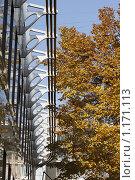 Купить «Осень в Москве», фото № 1171113, снято 20 октября 2009 г. (c) Яременко Екатерина / Фотобанк Лори