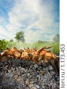 Купить «Шашлык на углях. Пикник.», фото № 1173453, снято 21 июля 2009 г. (c) FotograFF / Фотобанк Лори