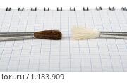 Купить «Два художника», фото № 1183909, снято 21 апреля 2009 г. (c) Вячеслав Рящиков / Фотобанк Лори