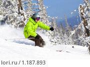 Купить «Мужчина на лыжах в лесу», фото № 1187893, снято 23 февраля 2009 г. (c) Петр Кириллов / Фотобанк Лори