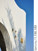 Тень от пальмы на белой стене ориентального стиля. Стоковое фото, фотограф Димитрий Сухов / Фотобанк Лори