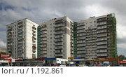 Купить «Ремонт фасадов  многоквартирных панельных домов в Зеленограде», фото № 1192861, снято 18 июня 2009 г. (c) Антон Алябьев / Фотобанк Лори