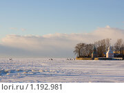 Купить «Сторожевые башни Галерной гавани», фото № 1192981, снято 8 января 2009 г. (c) Полина Столбушинская / Фотобанк Лори