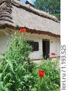 Купить «Домик в музее-заповеднике Пирогово», фото № 1193525, снято 15 июня 2009 г. (c) Анна Чуева / Фотобанк Лори