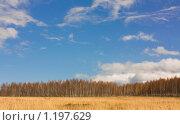 Небо над поляной. Стоковое фото, фотограф Толкачёв Евгений / Фотобанк Лори