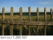 За забором. Стоковое фото, фотограф Игорь Иванов / Фотобанк Лори