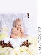 Ребенок в корзине. Стоковое фото, фотограф Ольга Ковальчук / Фотобанк Лори