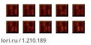 Купить «Набор деревянных кнопок с цифрами», иллюстрация № 1210189 (c) Мария Симонова / Фотобанк Лори