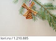 Купить «Новогодняя елочная игрушка», фото № 1210885, снято 13 ноября 2009 г. (c) Качанов Владимир / Фотобанк Лори