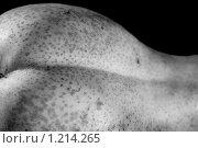 Купить «Вегетарианская эротика, груша», фото № 1214265, снято 14 ноября 2009 г. (c) Игорь Киселёв / Фотобанк Лори