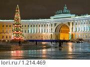 Купить «Новогодняя Дворцовая площадь. Санкт-Петербург», эксклюзивное фото № 1214469, снято 25 декабря 2008 г. (c) Александр Алексеев / Фотобанк Лори
