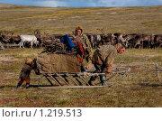 Купить «Помощник», фото № 1219513, снято 9 июля 2020 г. (c) Вадим Морозов / Фотобанк Лори