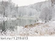 Купить «Зимний пейзаж», фото № 1219613, снято 17 ноября 2009 г. (c) Яна Королёва / Фотобанк Лори