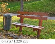 Купить «Скамейка и урна», эксклюзивное фото № 1220233, снято 14 октября 2009 г. (c) Алёшина Оксана / Фотобанк Лори